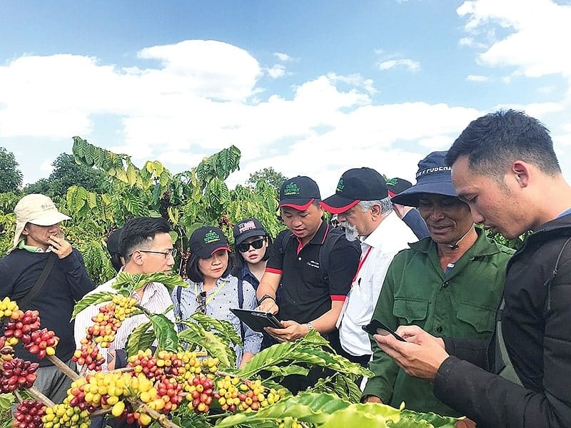Organic and Natural Farming